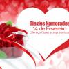 Doce flor Florista online!