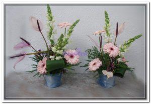 Coleção flores de ganga