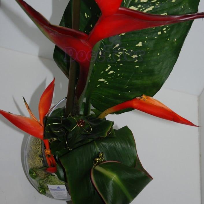 Arranjo floral com Heliconia