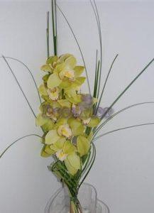 Simplesmente Orquídea