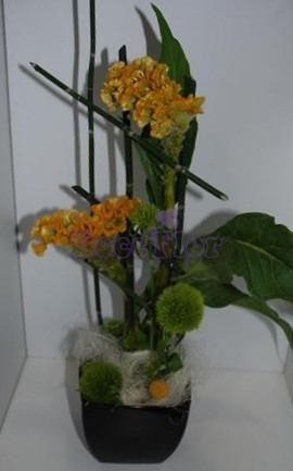 Celosias Amarelas