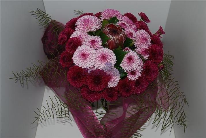 Bouquet de Proteia e Margaridas