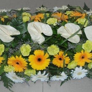Palmas para funeral